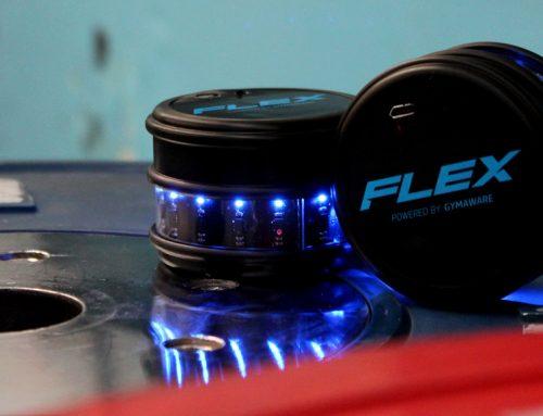 FLEX Sensor Validation Study